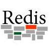 NoSQL数据库:Redis集群概念及功能解析