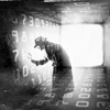 12个月 黑客制造Facebook开源服务器
