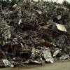 城市各区域的主要重金属污染物