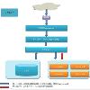 大型网站架构体系的演变