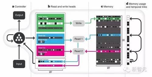 "DNC架构示意图。神经网络控制器(Controller,a 部分)接收外部输入,并利用""读写头""(Read and write head,b 部分)与存储器(Memory,c 部分)交互,进行信息的读取和写入操作。d 部分是内存使用和临时链接,跟踪信息被写入的顺序,并记录每个存储器位置当前的使用级别,帮助控制器快速、准确找到想要的信息。"