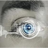 视觉与听觉相结合的深度跨域情绪识别